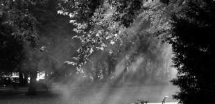 Sonnenstrahlen in Schwarz/Weiß